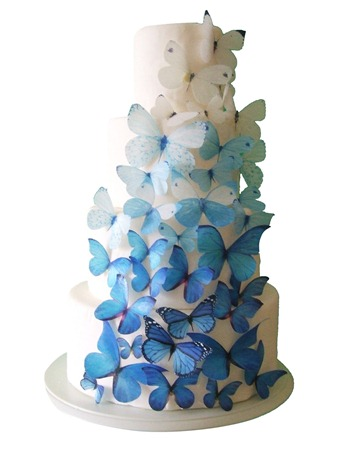 ombre wedding cake los cabos