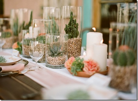 different cactus wedding centerpieces