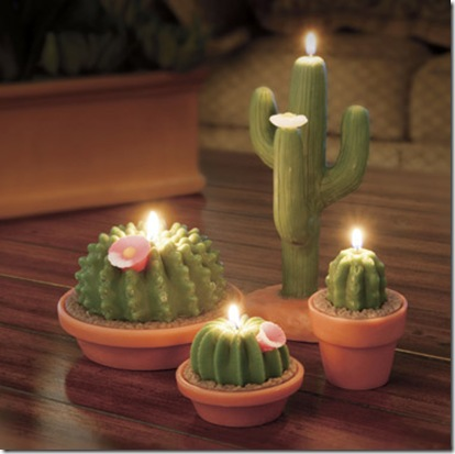 mexican potted cactus centerpiece