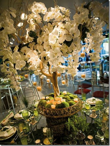 potted orchids eco-friendly wedding centerpiece idea